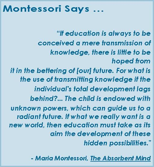 This Quote By Maria Montessori In The Absorbent Mind