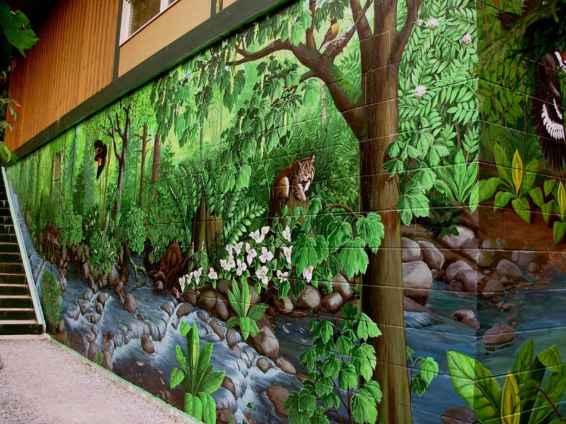 Image Result For Exterior Wall Murals Don Pinterest Wall