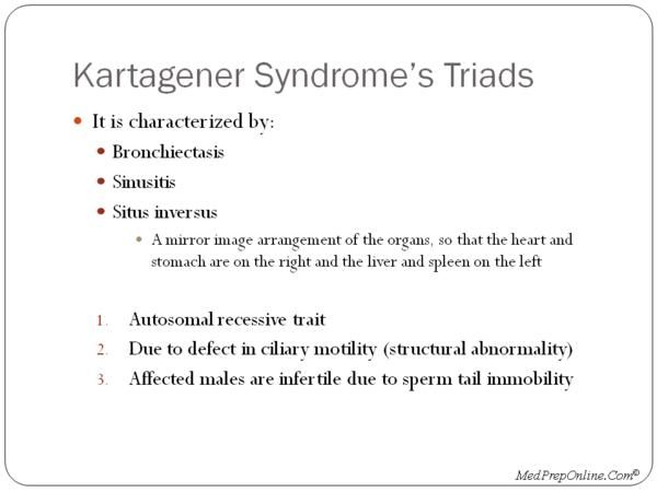 Pin By Nonas Arc On Kartagener Syndrome Pinterest Internal
