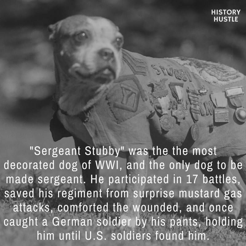 10 Unbelievable History Facts You Really Need To See History