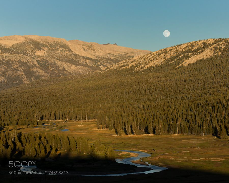 Full Moon and Tuolumne Meadows Yosemite National Park by 4cornersphoto