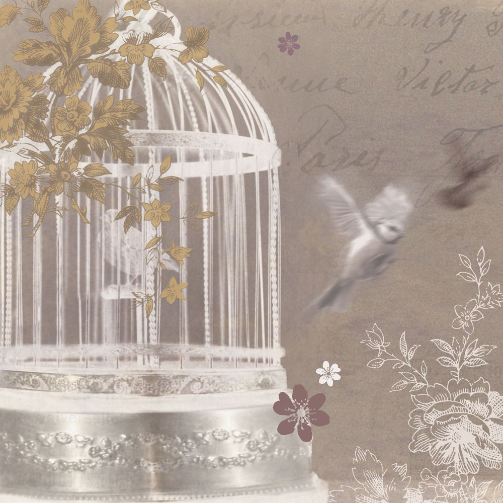 Silver Birdcage By Arthouse Wallpaper Direct Hanging Wall Art Home Art Canvas Wall Art