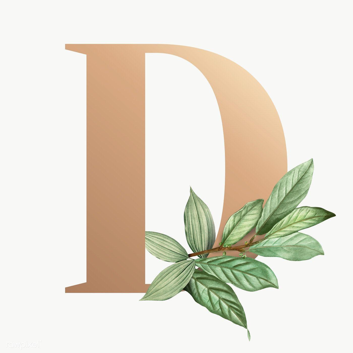 Botanical Capital Letter D Transparent Png Premium Image By Rawpixel Com Aum Lettering Picture Letters Flower Background Wallpaper