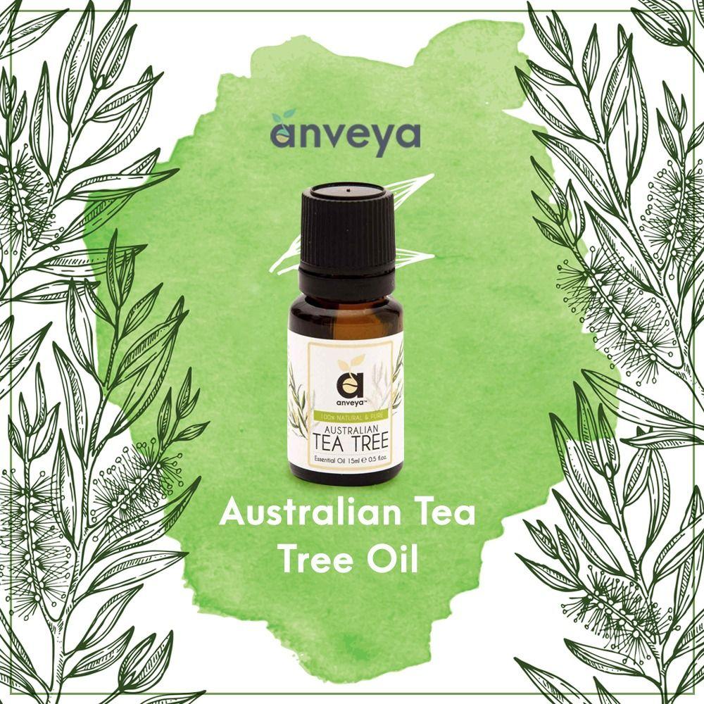 Studies Show That Tea Tree Oil Kills Several Common Bacterias