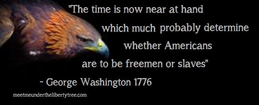 George Washington Quote With Images George Washington Quotes Washington George Washington
