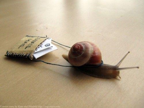 Snail Mail.....