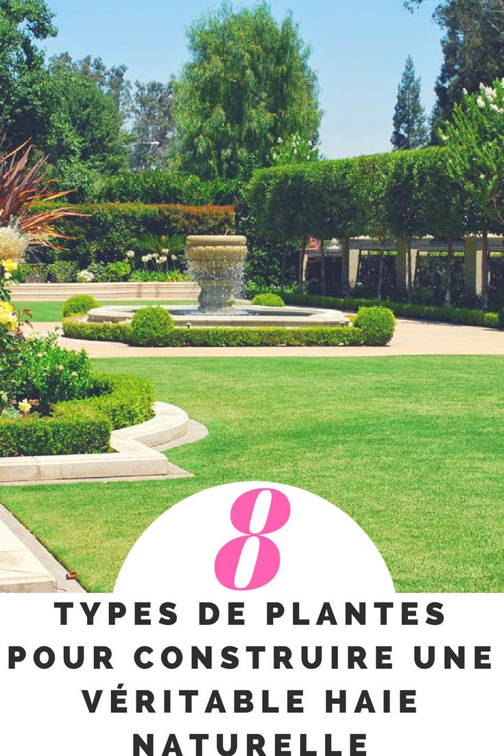 8 TYPES DE PLANTES POUR CRÉER UNE HAIE PARFAITE | Idées de jardins ...