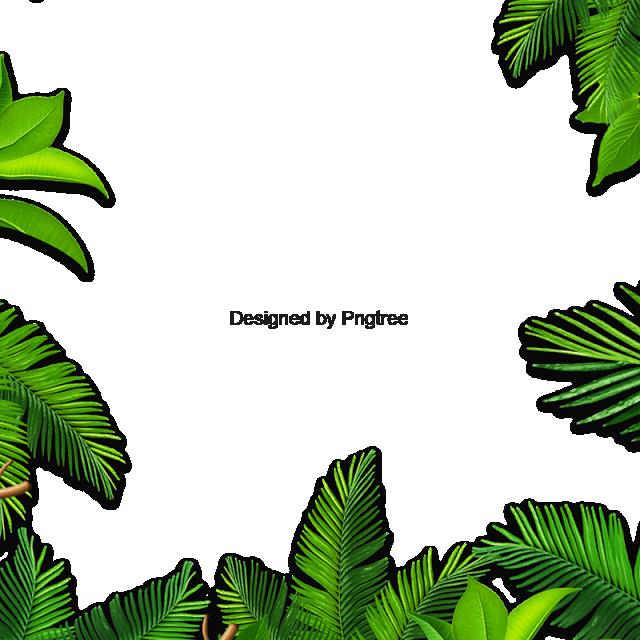 Hojas Palmera Hoja Verde Vector De Hojas Antecedentes Png Y Psd Para Descargar Gratis Pngtree Green Leaf Background Leaves Vector Leaf Background