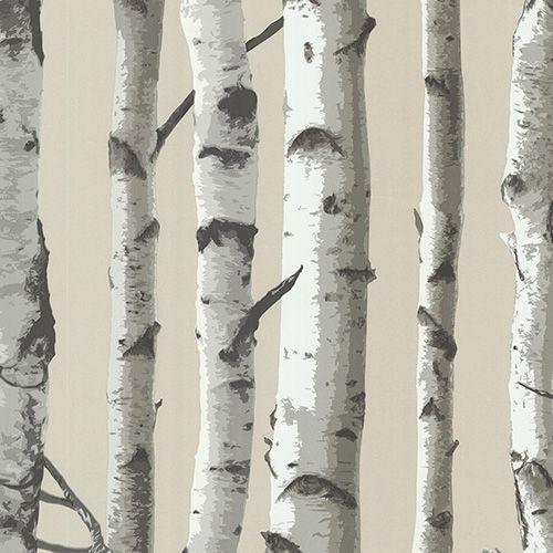 papier peint bouleaux papier peint motif de bouleaux non tiss lavable et pr encoll. Black Bedroom Furniture Sets. Home Design Ideas
