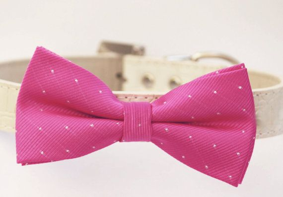 Hot Pink Dog Bow Tie, High quality Leather, Pink wedding accessory, Pink dog bow tie, Dog Birthday Accessory, Pink Lovers on Etsy, $29.99