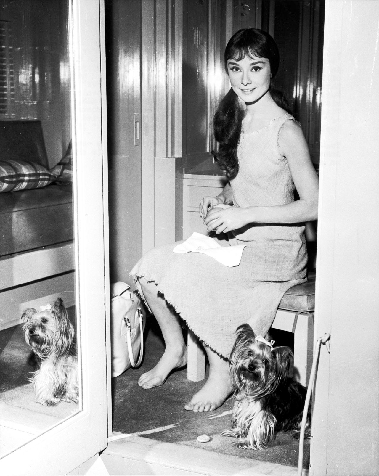0 audrey hepburn on set with mr famous
