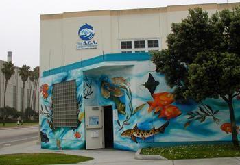 The SEA Lab, Redondo Beach, CA. Used to volunteer here <3