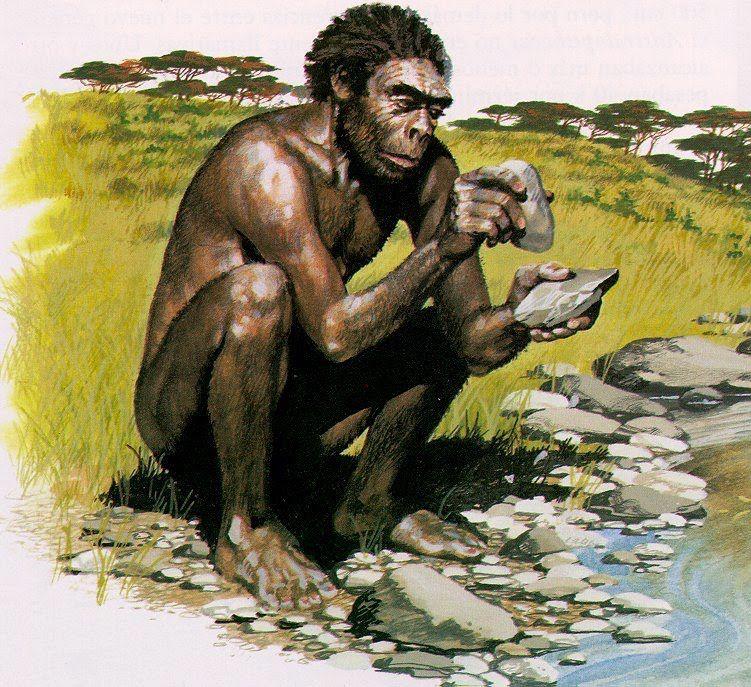 ceip miguel de cervantes: unidad 13: la prehistoria (5º de