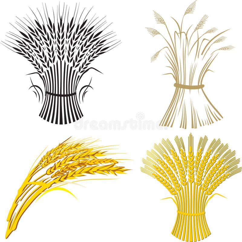 Four Wheat Sheaf Illustration Of Four Wheat Sheafs Spon Sheaf Wheat Sheafs Illustration Ad Wheat Drawing Wheat Sheaf Drawings