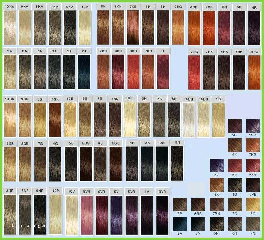 Ion Brilliance Hair Color Chart Cute Ion Color Brilliance Permanent Color Chart Ion Color Hair Color Chart Ion Hair Colors Goldwell Color Chart