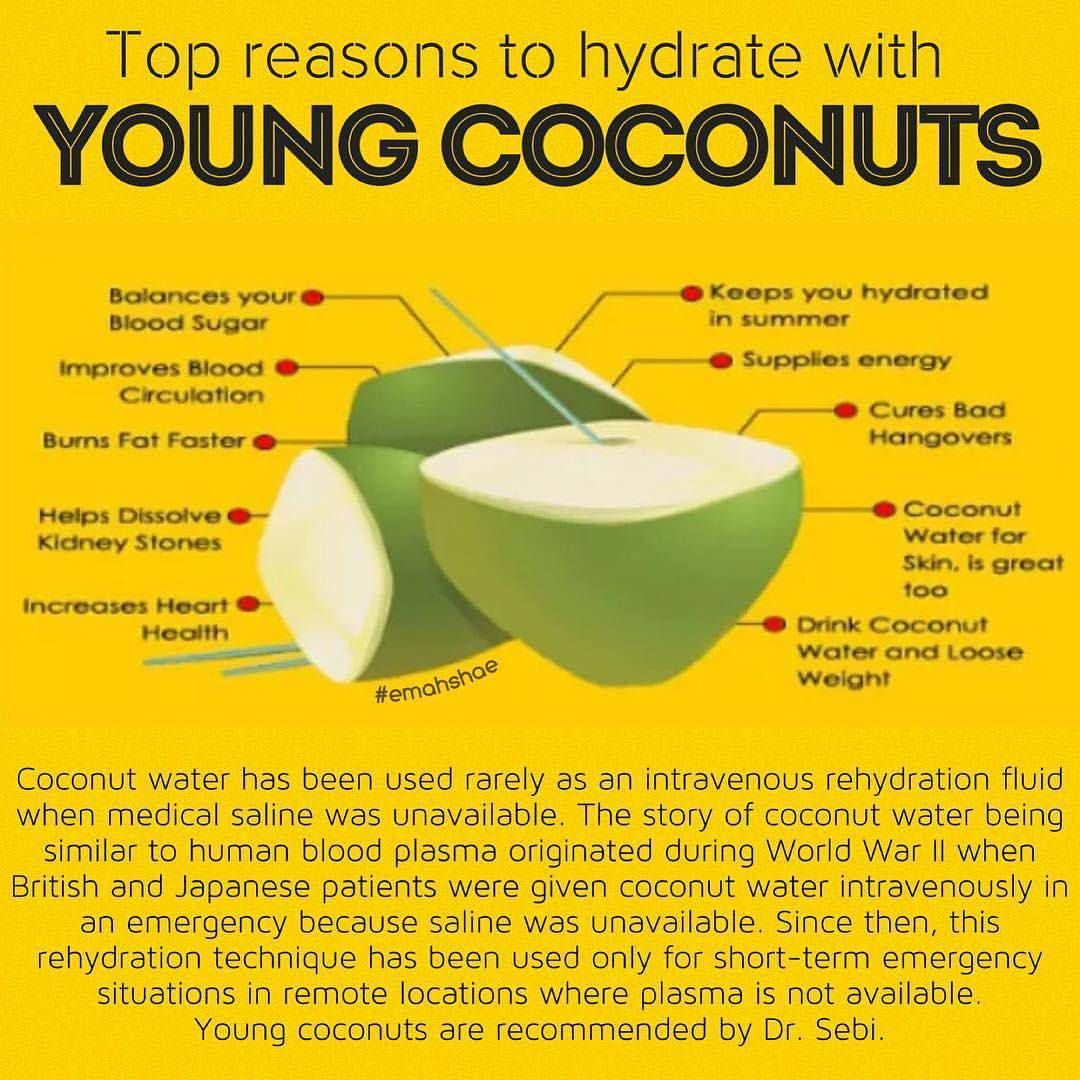 young coconut water is nature's gatorade | dr sebi alkaline