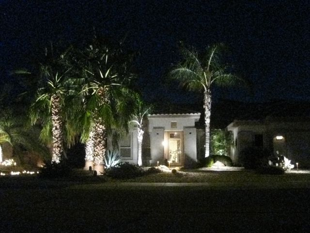 Outdoor Light Up Palm Tree Part - 38: Lighted Palm Tree Christmas Decor