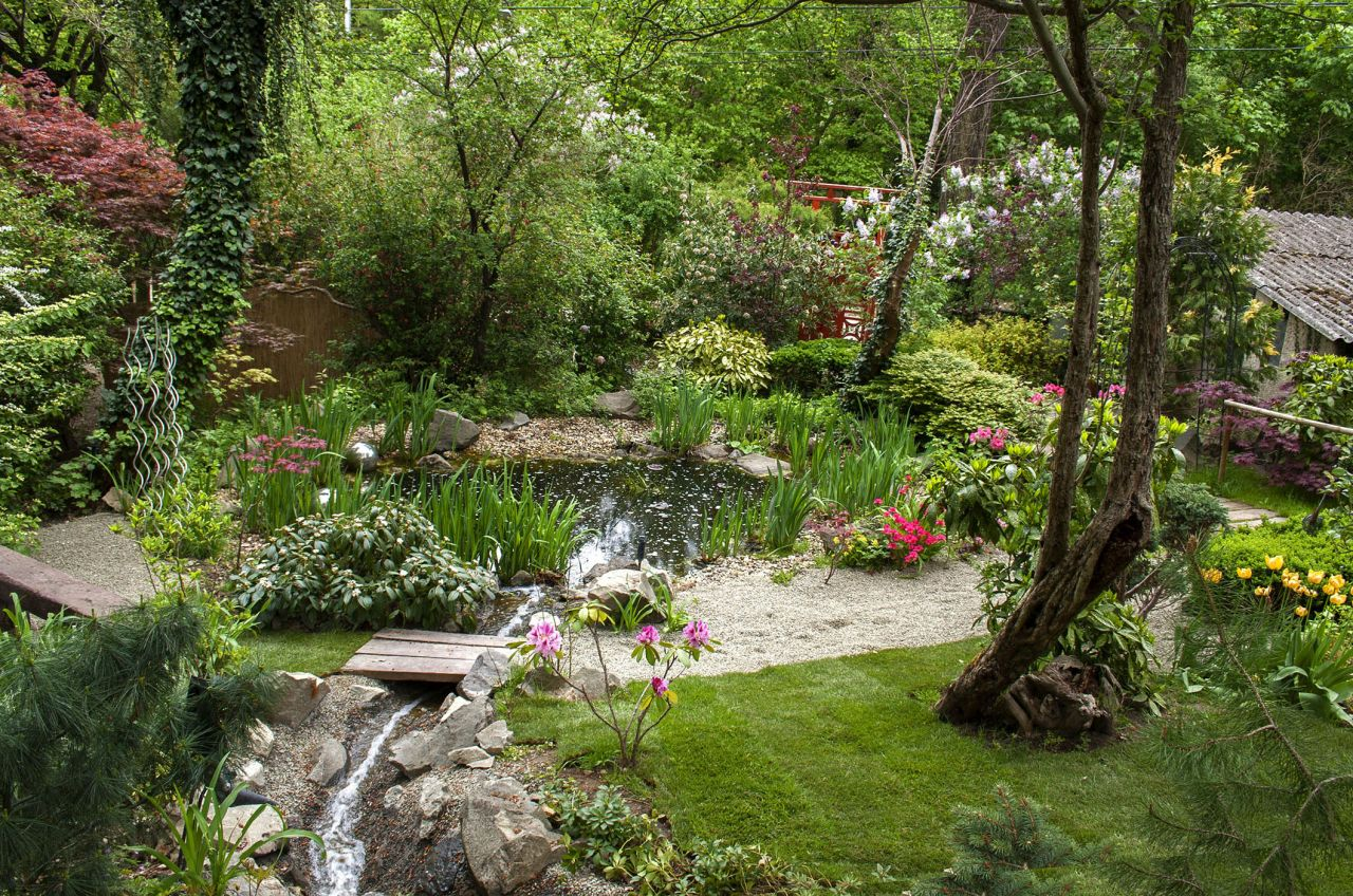 Piliskert Edenpont Water Features In The Garden Garden Visits Pond Landscaping