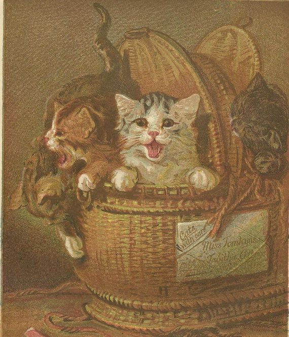 A Basket Of Kittens Original Color Print Litho Bookplate From 1882 Chatterbox Children S Book Just Arrived Antique Art Prints Chromolithograph Kittens