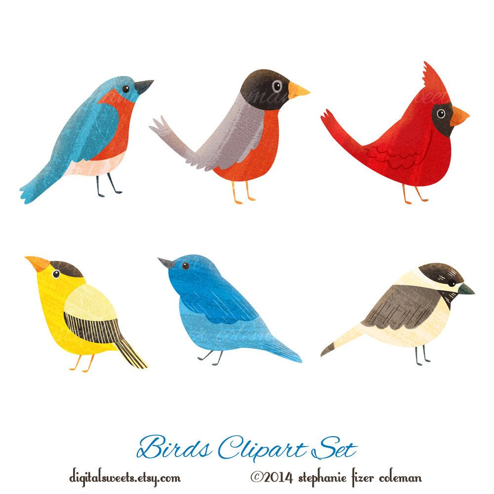 birds clipart set instant download cardinal robin bluebird rh pinterest com Black and White Chickadee Chickadee Bird