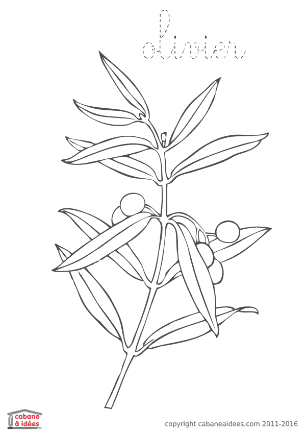 Coloriage Arbre Fleur.Fiches Et Pdf A Telecharger En 2019 Education Drawings
