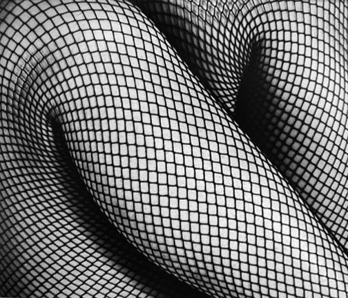 Fernand Fonssagrives - Fibonaci's Dream
