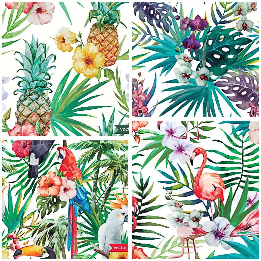 tropical pattern birds vector