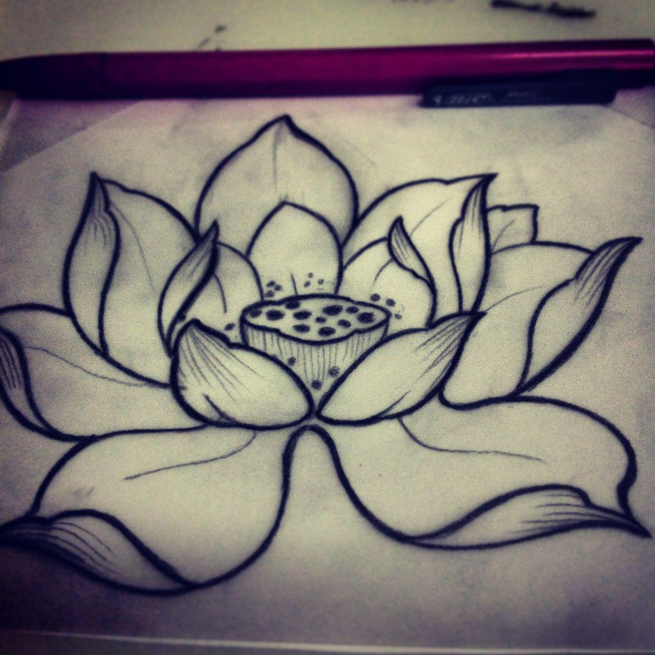 Beautiful lotus tattoo sketch small tattoo ideas pinterest beautiful lotus tattoo sketch izmirmasajfo