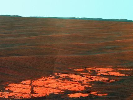 Endeavour on the Horizon (False Color)