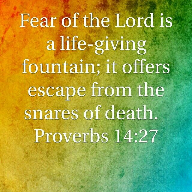 """""""The fear of the Lord is a fountain of life, enabling anyone to escape the snares of death."""" Proverbs 14:27"""
