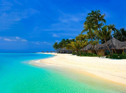 Caribbean Beach Bungalow Travel Collection
