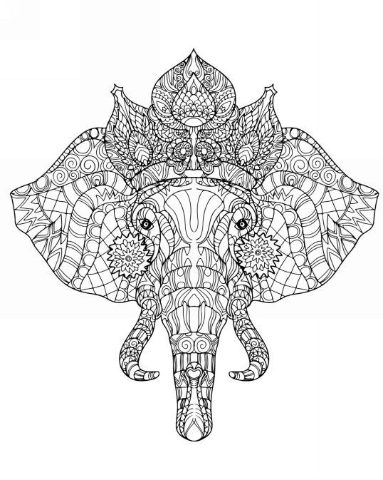 Adult Coloring Book: Wonderful Zoo Animals by Evelina Pod | ✐Adult ...
