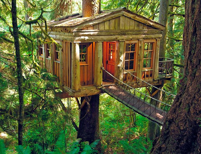 Alguna Vez Soñaste Con Dormir En Una Cabaña De Un árbol Imagenes De Casas Casas Inusuales Casa Del Arbol