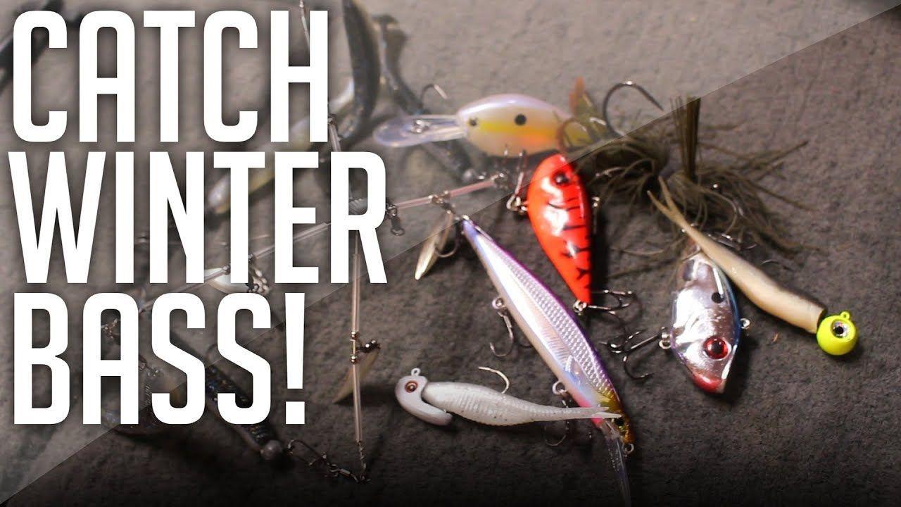 Catch WINTER Bass With These BAITS! Winter Bass Fishing