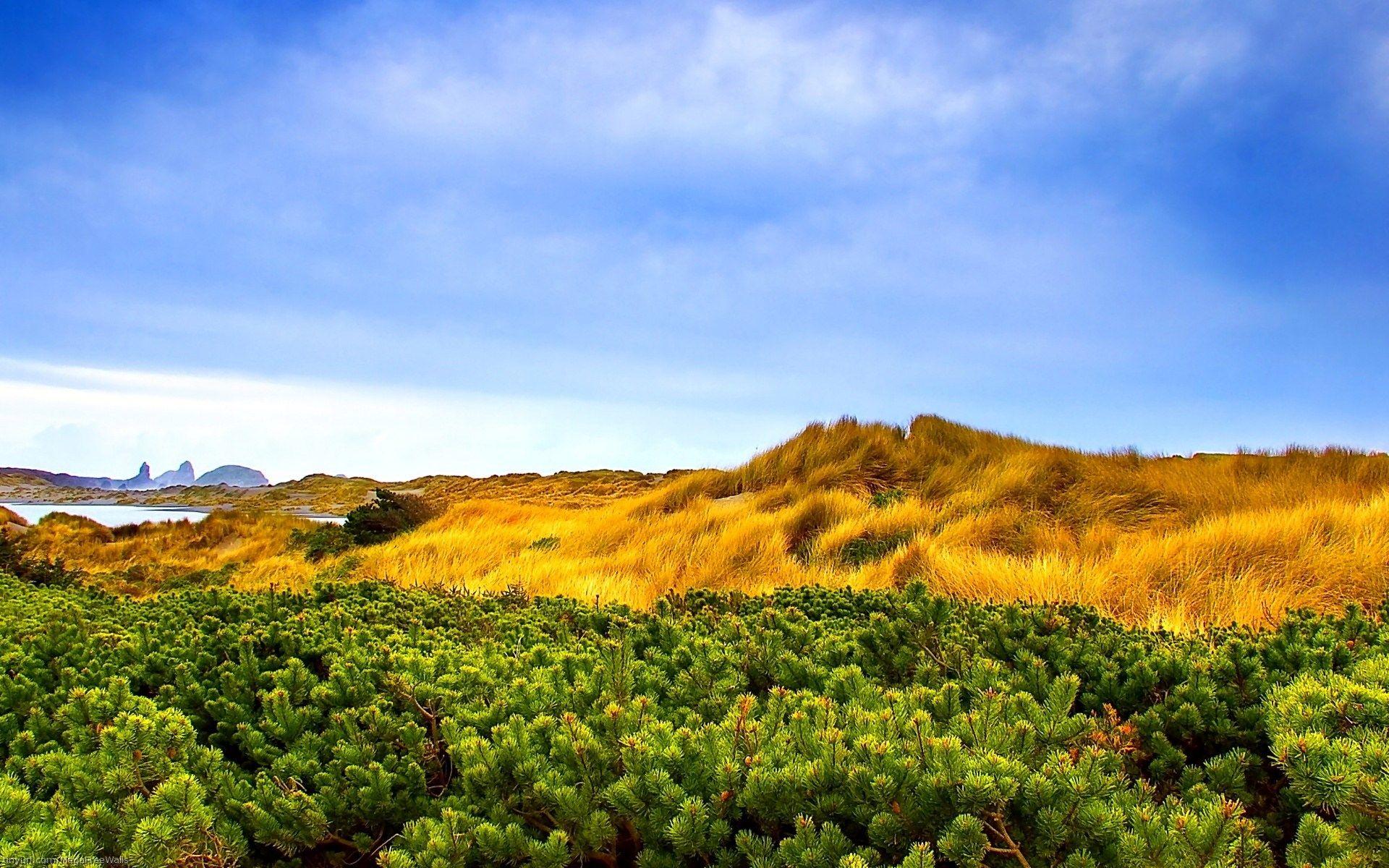 1920x1200 High Quality Landscape Windows Vista Wallpaper Nature Wallpaper Landscape