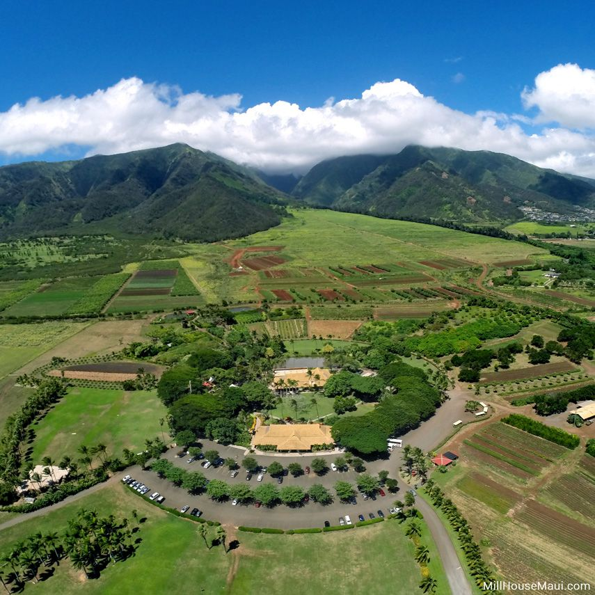 Best Maui Aerial Photos in 2020 Aerial photo, Hawaii