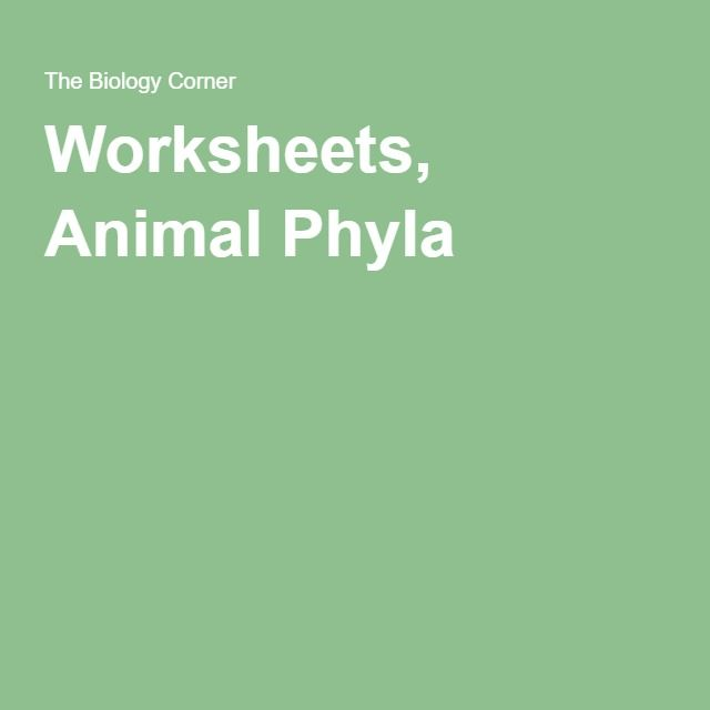 Worksheets Animal Phyla Homeschool High School School