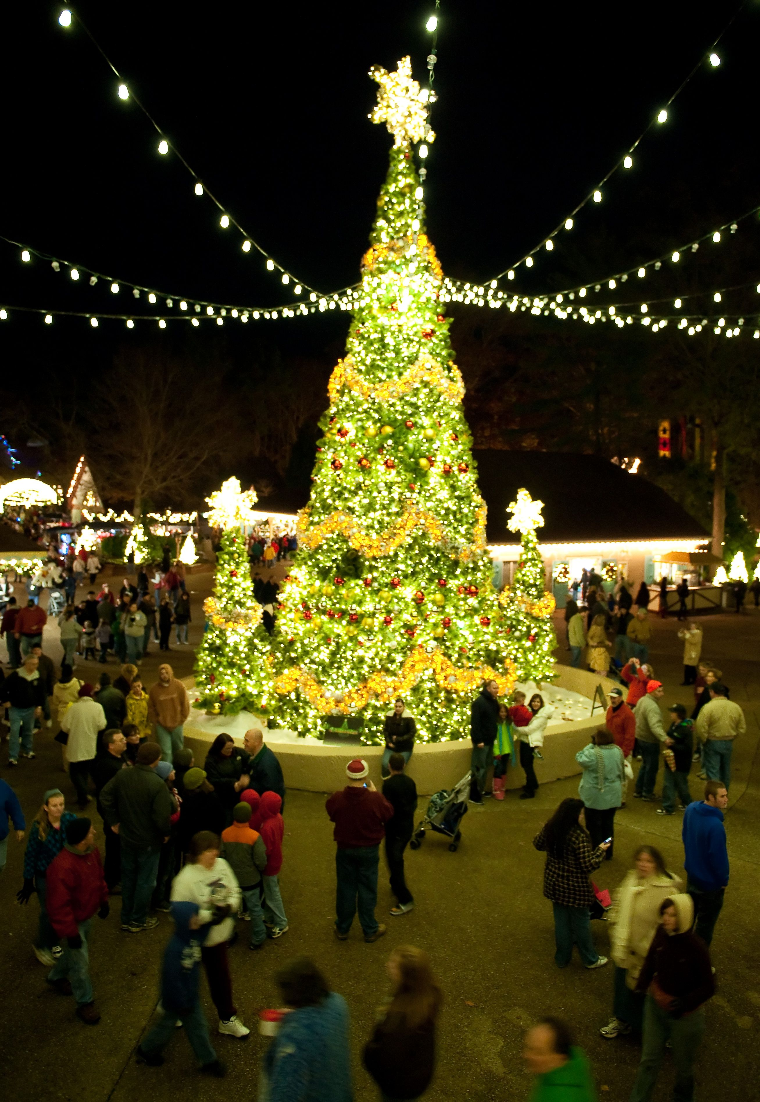 What Rides Are Open During Christmas Town Busch Gardens Williamsburg