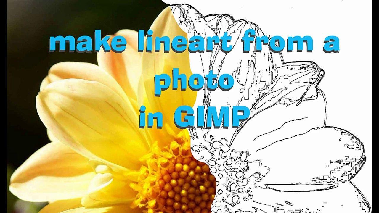 Lineart From Photo In Gimp Gimp Tutorial Gimp Photo