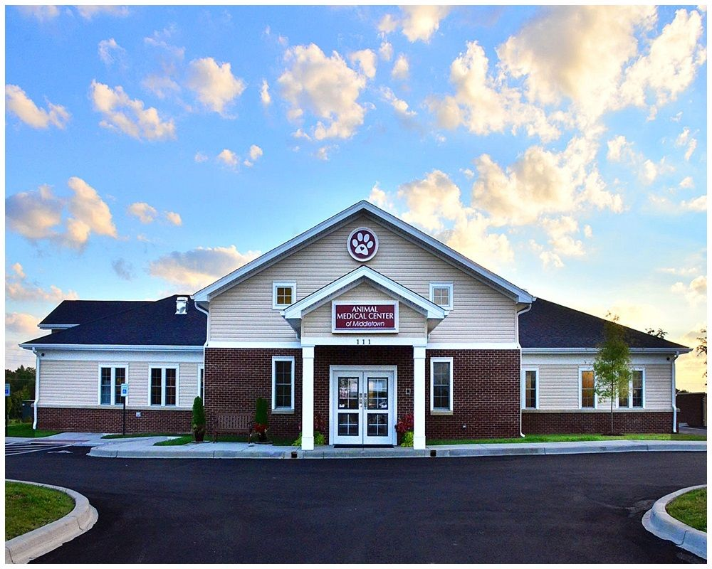 Animal medical center of middletown veterinarian in
