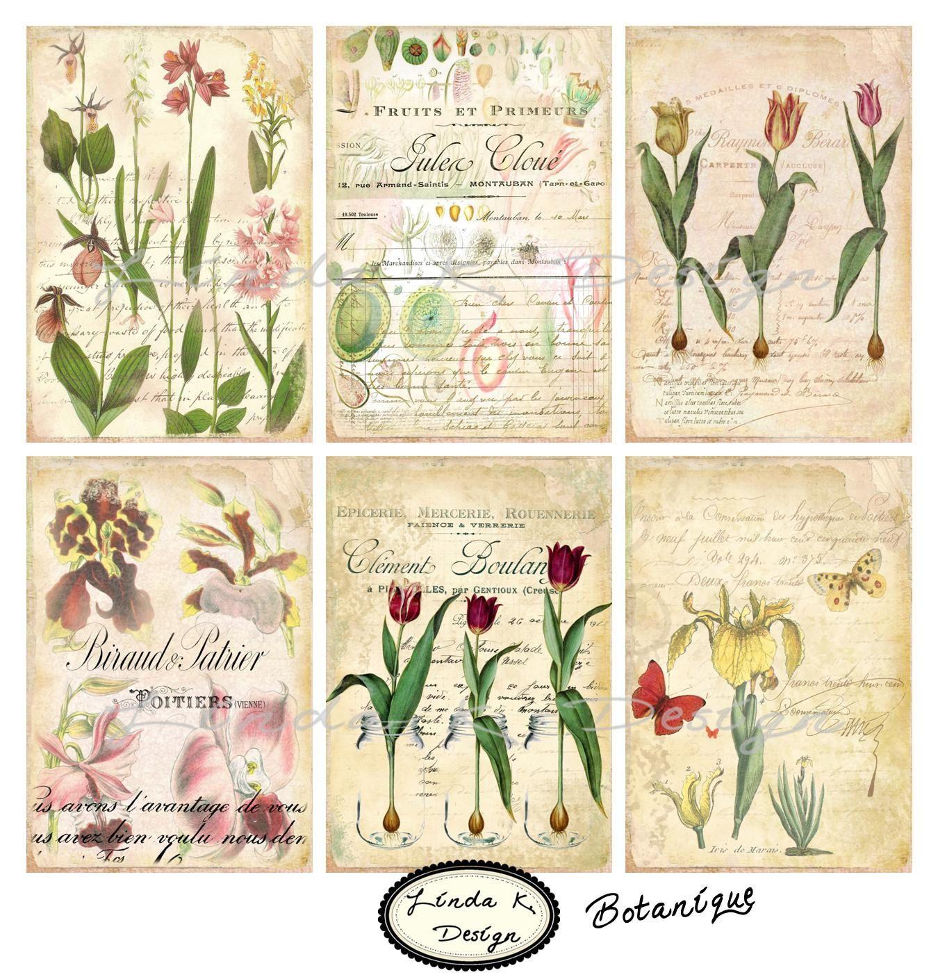 Botanique Collage SheetDigital ScrapbookingDigital by lindakdesign
