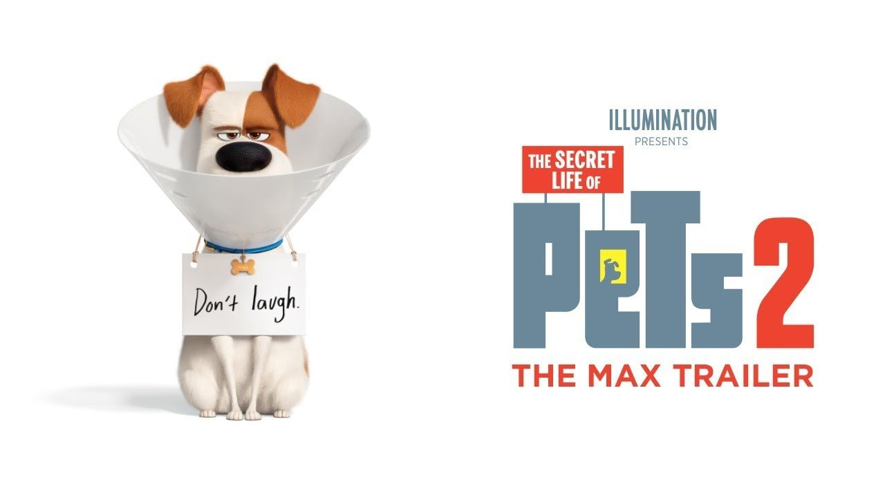 The Secret Life Of Pets 2 The Max Trailer Hd With Images