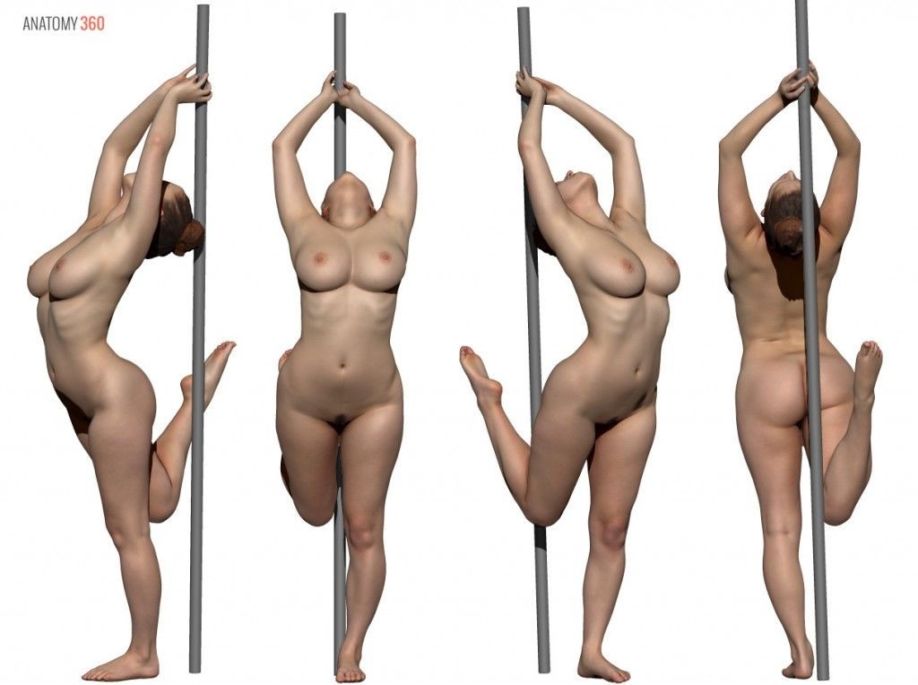 Pin By John Gotch On 3d Scans Pinterest Anatomy Pose And Female