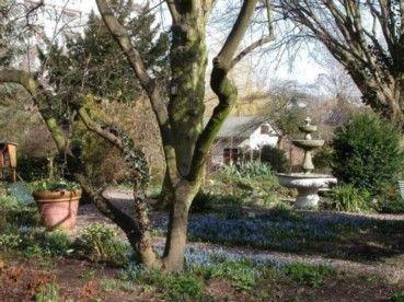 Botanische Tuin Rotterdam : Botanische tuin trompenburg garden tuinen the netherlands