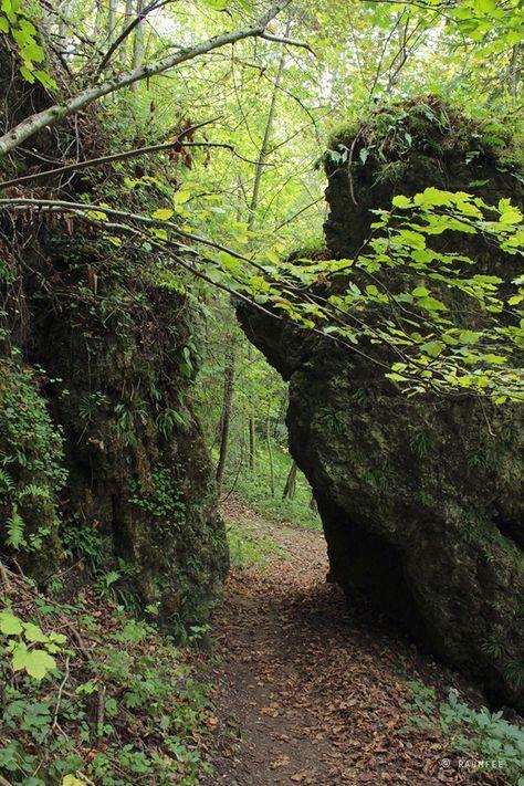 Viel Wald und noch mehr Höhlen - Auf dem Promenadenweg über dem Ailsbachtal rund um Burg Rabenstein in der Fränkischen Schweiz.