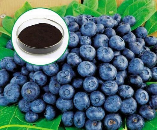 Image result for bilberry fruit for pigmentation