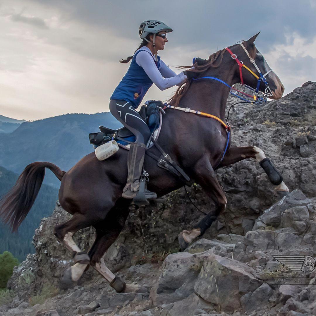 Ultralight Saddle – Specialized Saddles