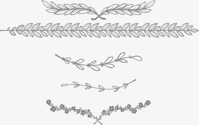 flower dividing line