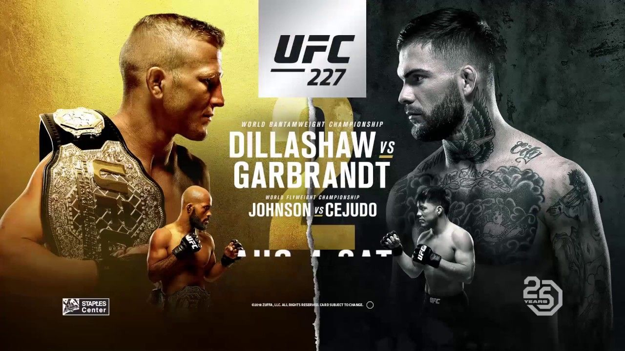 Ufc227 Backyard Backyarddtx Ufc Free Live Streaming The Daily Show
