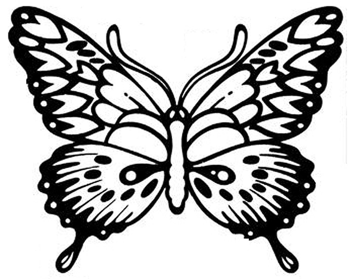 Detailed Butterfly Colouring Pages Page 2 Butterfly Coloring Page Coloring Pages Colouring Pages [ 952 x 1200 Pixel ]